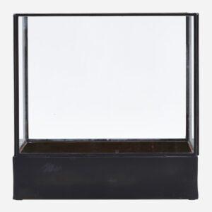 Display box, Plant